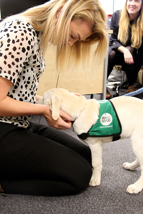 Milly at VetPlus HQ 6