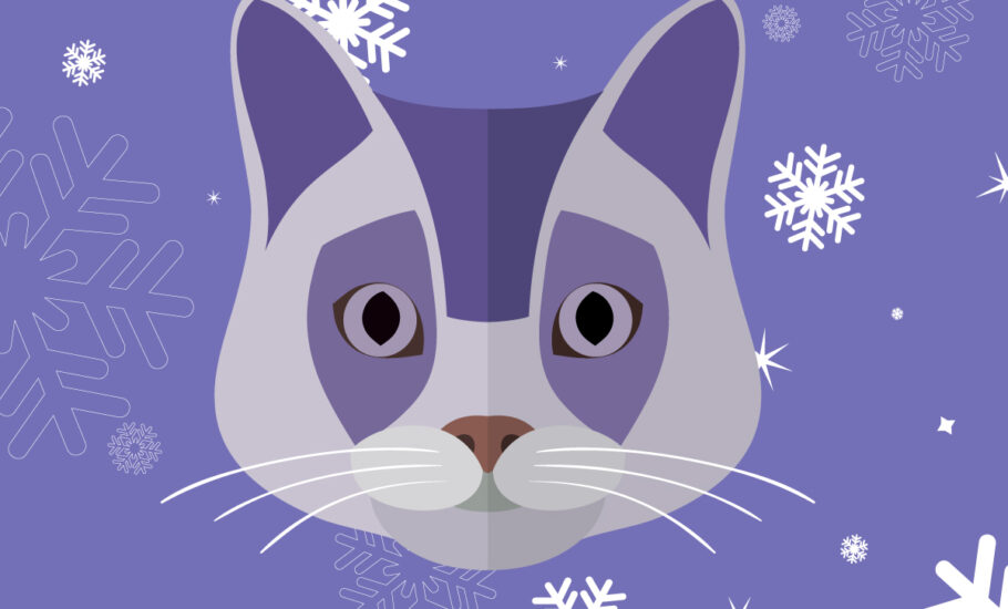 Stressful Situations for Cats at Christmas - Infographic By VetPlus